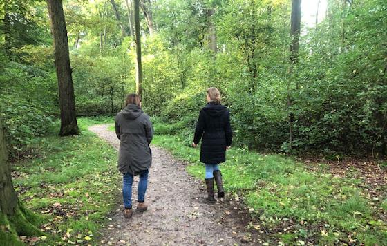 12 redenen waarom wandelcoaching zo goed werkt | wandelcoach.nl