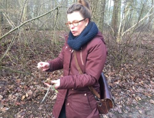 Lotje Stremmelaar: De natuur geeft hoop!