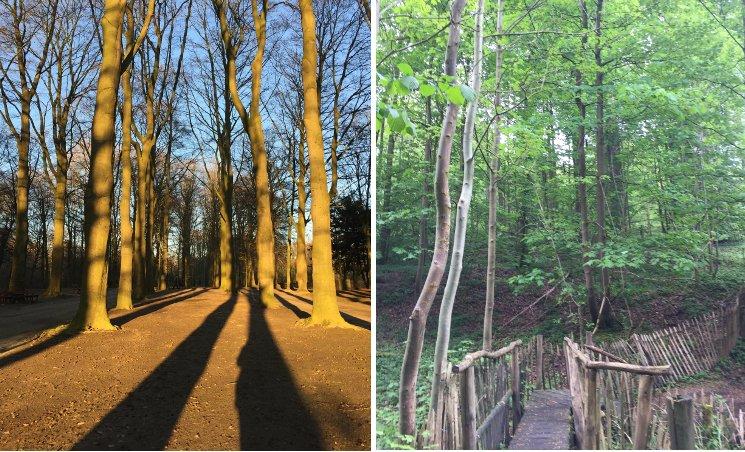 Mieke Buyle professioneel pad uitstippelen in Ossegempark Laken