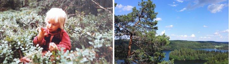Katriina Kilpi in leven en werk verbonden aan natuur