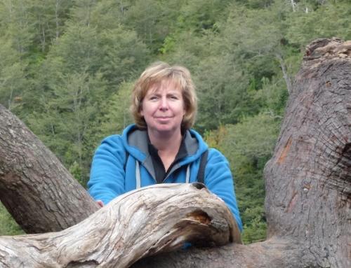 Ellen Pauw: Ga op reis om de reis te maken