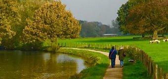 Training Wandelcoaching bij stress & burn-out