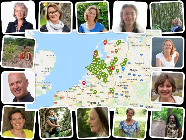 Wandelcoaches Nederland Belgie Het Coach Bureau