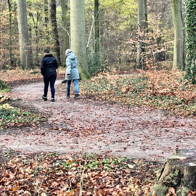 Psychologie van samen wandelen